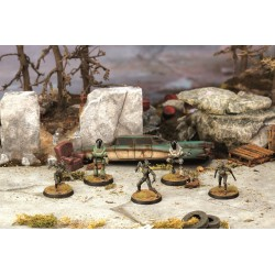 FALLOUT WASTELAND WARFARE - ASSAULTRONS & PROTECTRONS