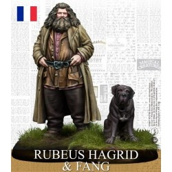 Harry Potter - Rubeus Hagrid & Fang (FR)