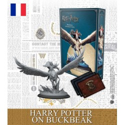Harry Potter - Harry Potter sur Buck (FR)