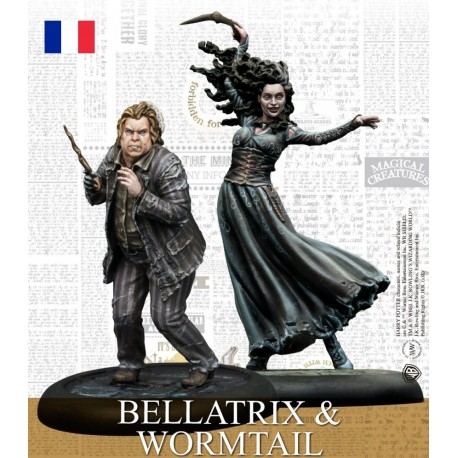 Harry Potter - Bellatrix & Queudver